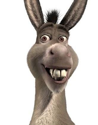 orejas de burro